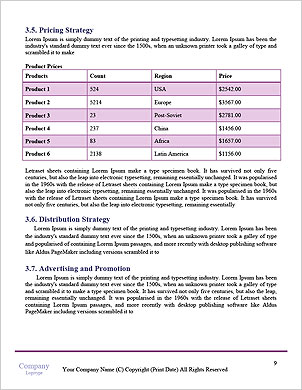 0000061620 Word Template - Page 9