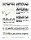 0000061642 Word Templates - Page 4