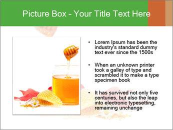 0000061644 PowerPoint Template - Slide 13