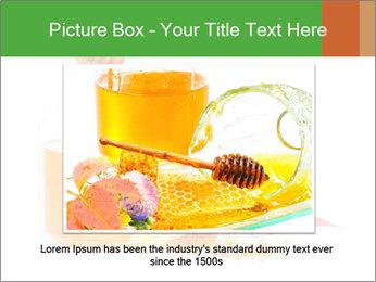 0000061644 PowerPoint Template - Slide 16