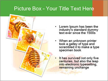 0000061644 PowerPoint Template - Slide 17