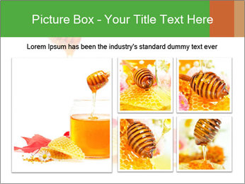 0000061644 PowerPoint Template - Slide 19