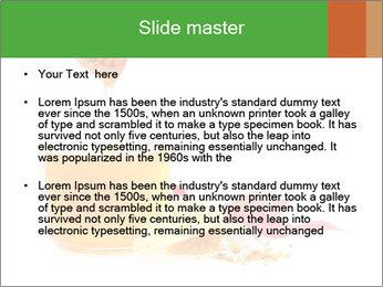 0000061644 PowerPoint Template - Slide 2