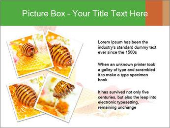 0000061644 PowerPoint Template - Slide 23