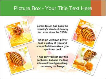 0000061644 PowerPoint Template - Slide 24