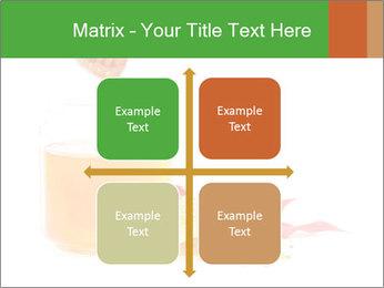 0000061644 PowerPoint Template - Slide 37