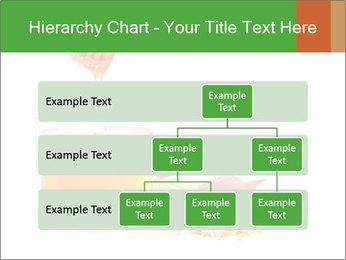 0000061644 PowerPoint Template - Slide 67