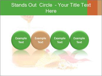 0000061644 PowerPoint Template - Slide 76