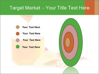 0000061644 PowerPoint Template - Slide 84