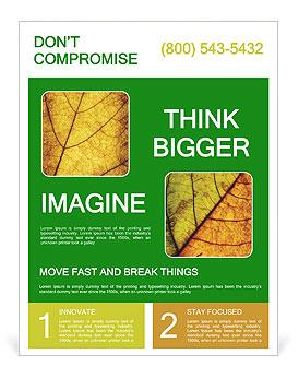 0000061645 Flyer Template