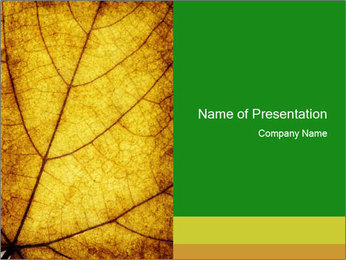 0000061645 PowerPoint Template - Slide 1