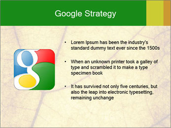 0000061645 PowerPoint Template - Slide 10