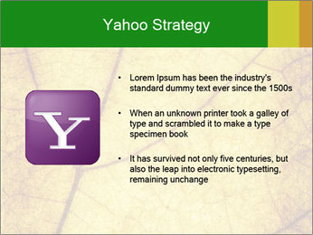 0000061645 PowerPoint Template - Slide 11
