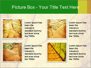 0000061645 PowerPoint Template - Slide 14