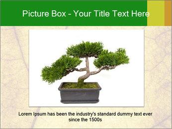 0000061645 PowerPoint Template - Slide 16