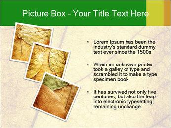 0000061645 PowerPoint Template - Slide 17