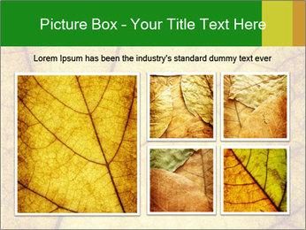 0000061645 PowerPoint Template - Slide 19