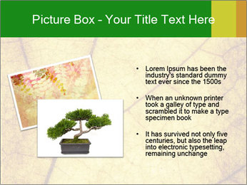 0000061645 PowerPoint Template - Slide 20