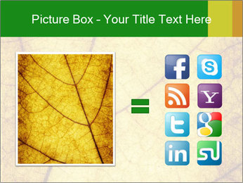 0000061645 PowerPoint Template - Slide 21