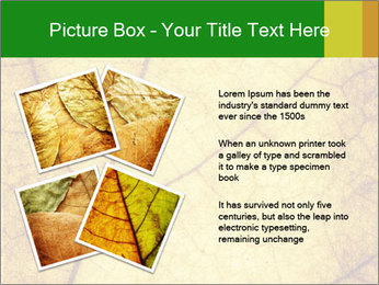 0000061645 PowerPoint Template - Slide 23