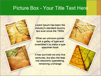 0000061645 PowerPoint Template - Slide 24