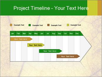 0000061645 PowerPoint Template - Slide 25