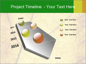 0000061645 PowerPoint Template - Slide 26