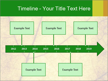 0000061645 PowerPoint Template - Slide 28