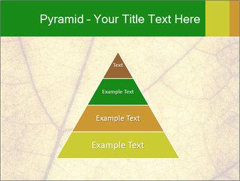 0000061645 PowerPoint Template - Slide 30