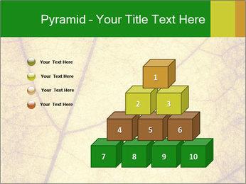 0000061645 PowerPoint Template - Slide 31