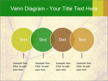 0000061645 PowerPoint Template - Slide 32