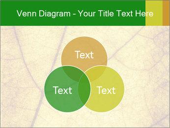 0000061645 PowerPoint Template - Slide 33