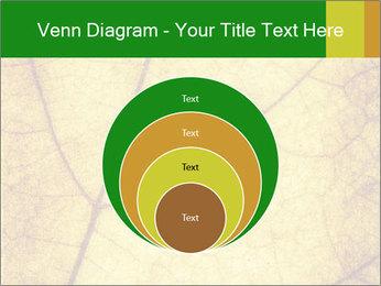0000061645 PowerPoint Template - Slide 34