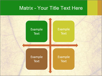 0000061645 PowerPoint Template - Slide 37