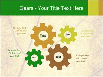 0000061645 PowerPoint Template - Slide 47