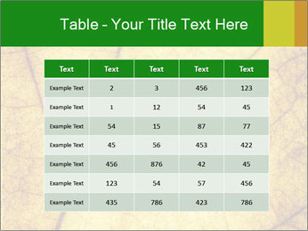 0000061645 PowerPoint Template - Slide 55