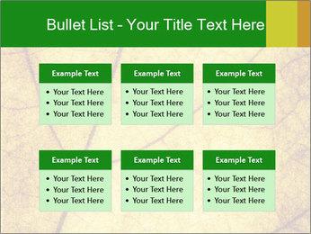 0000061645 PowerPoint Template - Slide 56