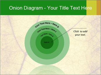 0000061645 PowerPoint Template - Slide 61