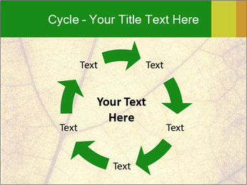 0000061645 PowerPoint Template - Slide 62