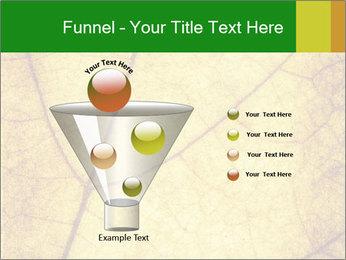 0000061645 PowerPoint Template - Slide 63