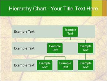 0000061645 PowerPoint Template - Slide 67