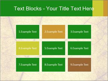 0000061645 PowerPoint Template - Slide 68