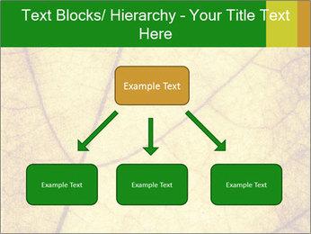 0000061645 PowerPoint Template - Slide 69