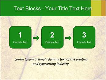 0000061645 PowerPoint Template - Slide 71