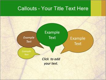 0000061645 PowerPoint Template - Slide 73