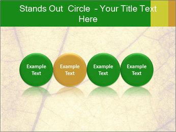 0000061645 PowerPoint Template - Slide 76