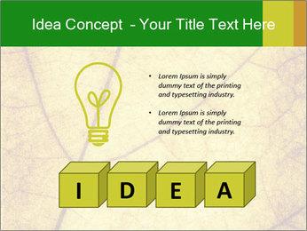 0000061645 PowerPoint Template - Slide 80