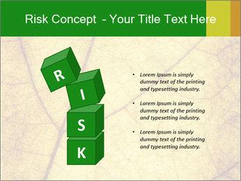 0000061645 PowerPoint Template - Slide 81