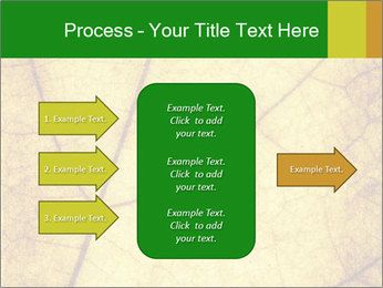 0000061645 PowerPoint Template - Slide 85