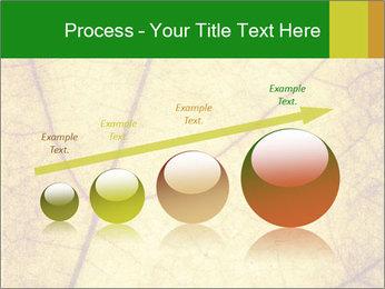 0000061645 PowerPoint Template - Slide 87